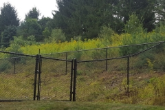 4' Pool Code Black Chain Link Fence