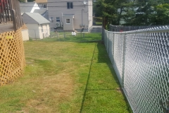 5' Galvanized Chain Link Fence